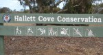 Hallet Cove Conservation Park, South Australia
